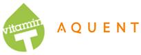 2013.aom.sponsor.vtaquent